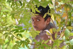 portrait, kid, fibonacci, branches, tree, eyes, india, indian, photography
